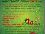 locandina_elfi